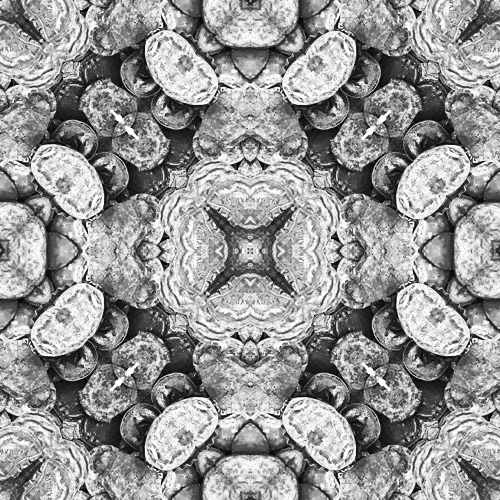 Black & White Bottle Caps in the Square,  SusieQ  digital manipulation, mixed media
